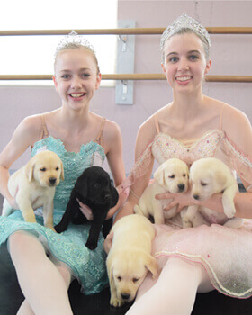Pirouettes-for-Pets